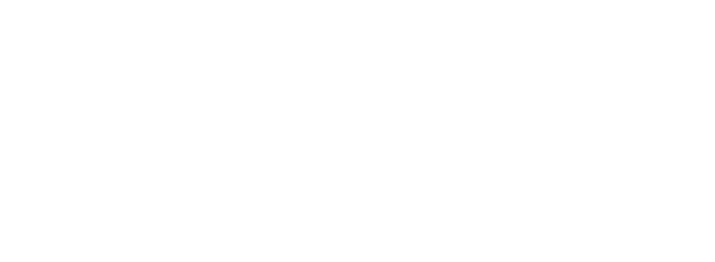 Logo Light - City Finance
